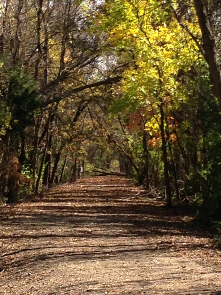 Illinois Central Railroad Riverwalk